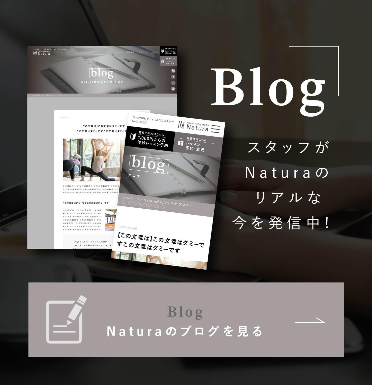 Blog スタッフがNaturaのリアルな今を発信中! Blog Naturaのブログを見る
